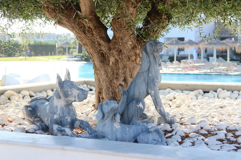 outdoor hundefiguren am pool