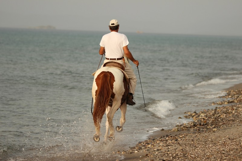 reiten am strand, horse riding at the beach